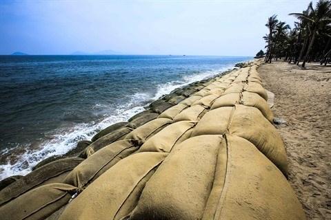 Tourisme maritime : l'impact du rechauffement du climat au Vietnam se precise hinh anh 2