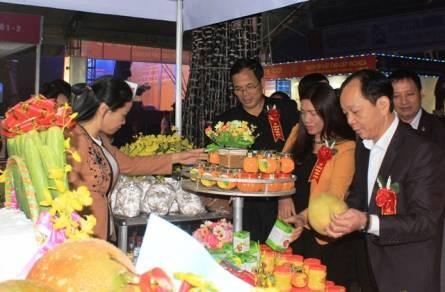 Foire commerciale internationale de la partie Nord du Centre-Thanh Hoa 2016 hinh anh 1