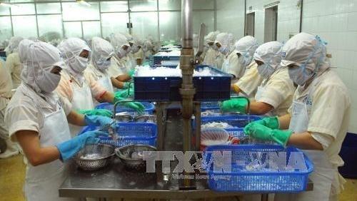 Soutien aux travailleurs vietnamiens a l'etranger hinh anh 1