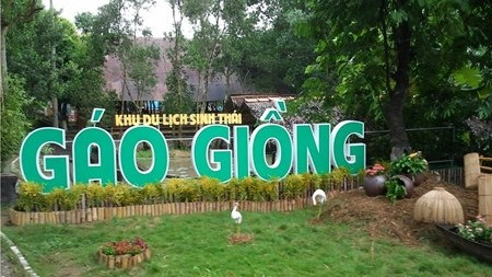 Province de Dong Thap: Gao Giong, haut lieu du tourisme vert hinh anh 1
