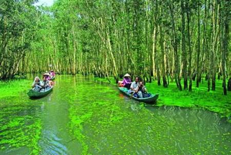Province de Dong Thap: Gao Giong, haut lieu du tourisme vert hinh anh 2
