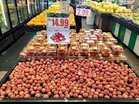 Creer une place digne des fruits du Vietnam sur le marche mondial hinh anh 1