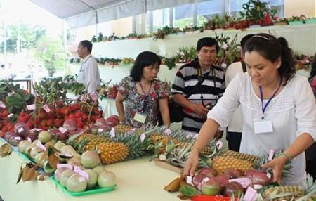 Creer une place digne des fruits du Vietnam sur le marche mondial hinh anh 2