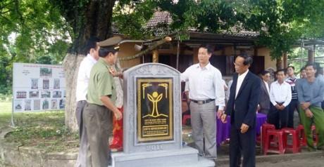 Les plaqueminiers du Quang Nam reconnus heritage national hinh anh 1