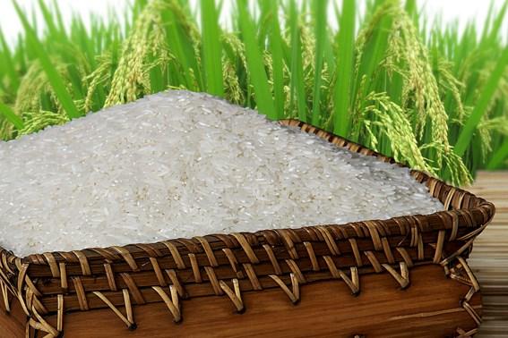 Le riz vietnamien a l'honneur hinh anh 1