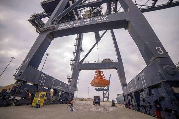 Les dockers deja a pied d'œuvre au port de Cai Lan hinh anh 1