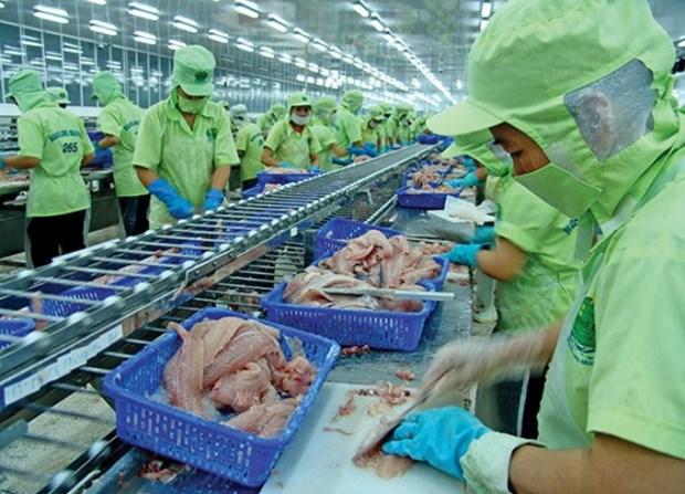 La Chine, marche cible pour les pangasius du Vietnam en 2017 hinh anh 1