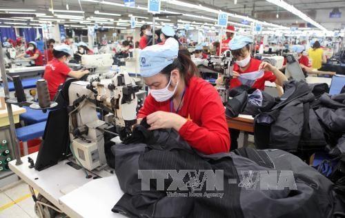 Textile-habillement : May 10 vise un chiffre d'affaires de 3.100 milliards de dongs hinh anh 1