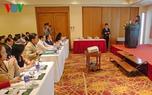 Da Nang presente ses produits touristiques au public hanoien hinh anh 1