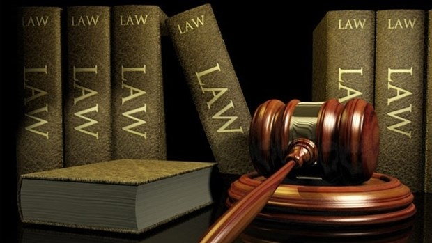 Perfectionnement de plusieurs textes juridiques importants hinh anh 1