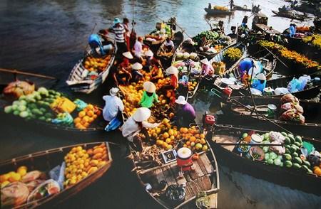 Les marches multicolores du Vietnam hinh anh 1