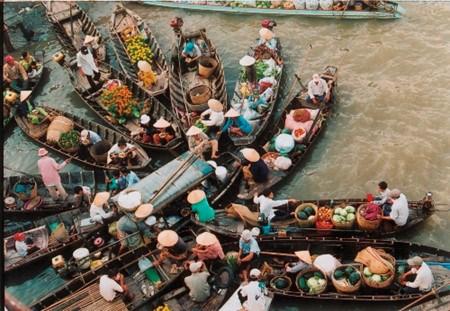 Les marches multicolores du Vietnam hinh anh 3