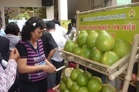 Journee des produits issus des cooperatives du Sud hinh anh 2
