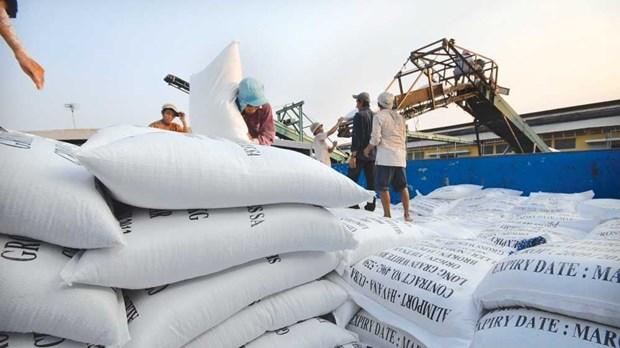 Le Vietnam entend favoriser l'acces au marche mondial de ses exportateurs de riz hinh anh 1