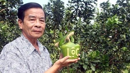 A l'approche du Tet: Des fruits «stylises» hinh anh 1