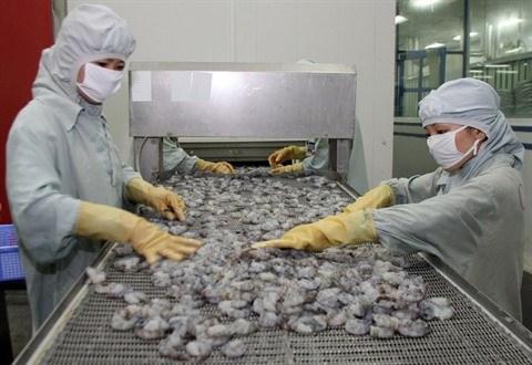 L'exportation de crevettes vietnamiennes en UE enregistre une croissance de 7,5% en 2016 hinh anh 1