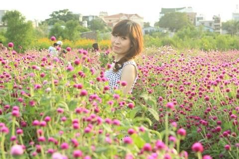 Les fleurs «oubliees» font leur retour hinh anh 3