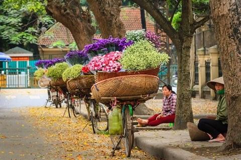 Les fleurs et leur histoire hinh anh 1