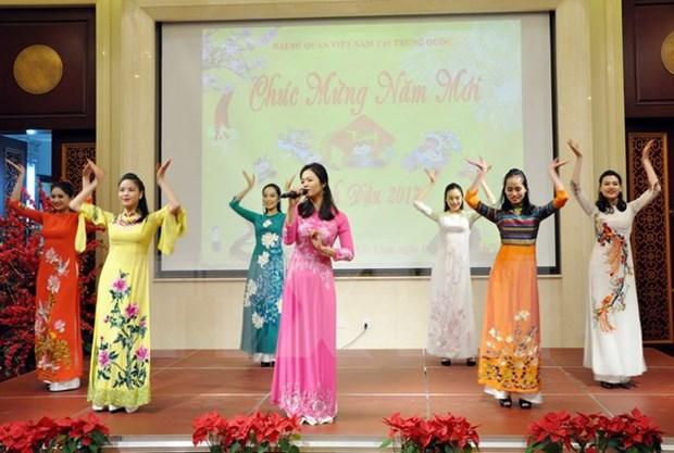 Les Vietnamiens de Chine et du Mozambique fetent le Tet traditionnel hinh anh 1