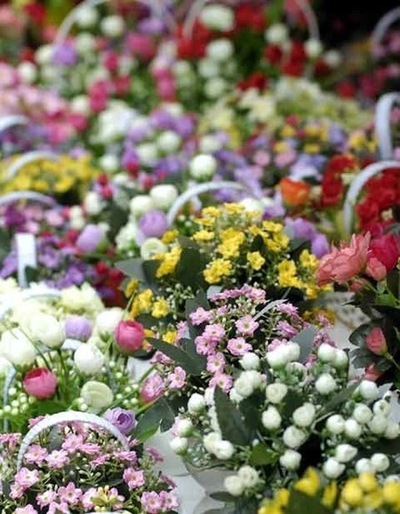 Les marches aux fleurs de Hanoi hinh anh 4