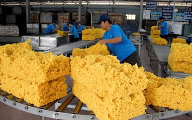 Pres de 60% de caoutchouc vietnamien est exporte en Chine hinh anh 1
