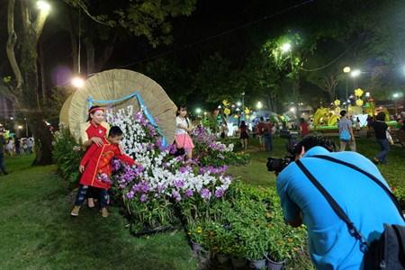 Des foires printanieres aux fleurs a Ho Chi Minh-Ville hinh anh 4