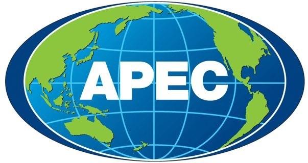 APEC 2017: la Douane vietnamienne sera chargee d'organiser ddifferentes activites hinh anh 1