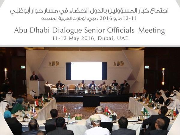Ouverture de la 4e conference consultative ministerielle du dialogue Abu Dhabi hinh anh 1