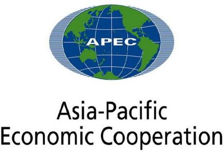 Les contributions actives du Vietnam a l'APEC hinh anh 1