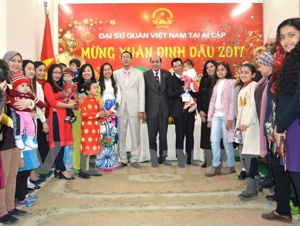 La diaspora vietnamienne accueille le Tet traditionnel dans differents pays hinh anh 1