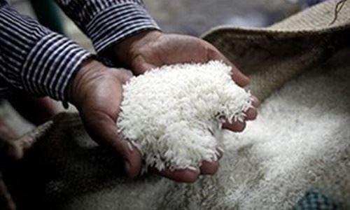 Le Laos prevoit d'exporter 400.000 tonnes de riz en 2017 hinh anh 1