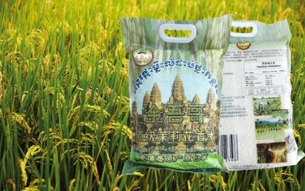 Pres de 160 millions de dollars pour developper le secteur agricole au Cambodge hinh anh 1