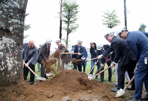 Hanoi lance la Fete de la plantation d'arbres 2017 hinh anh 2