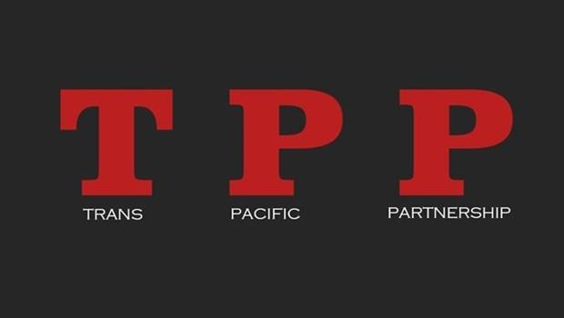 TPP-1 et premier effort pour promouvoir le libre commerce en Asie-Pacifique hinh anh 1