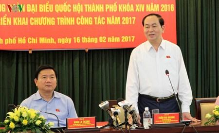 Conference-bilan de la delegation de deputes de Ho Chi Minh-Ville hinh anh 1
