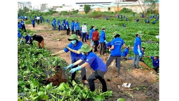 Bientot le Mois d'action pour l'environnement de 2017 hinh anh 1