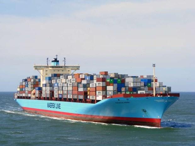 Le port de Cai Mep accueille un porte-conteneurs de plus 18.000 TEU hinh anh 1
