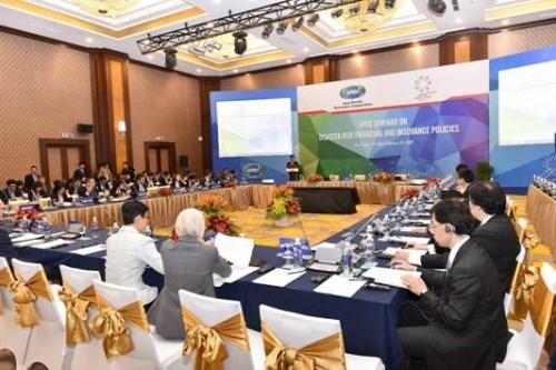 APEC 2017: pour mieux faire face aux catastrophes naturelles hinh anh 1