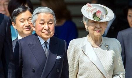 L'Empereur du Japon et son epouse sont attendus au Vietnam hinh anh 1