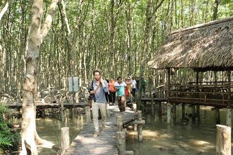 Can Gio : nature et histoire a la croisee des chemins hinh anh 2