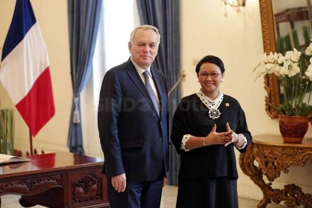 L'Indonesie et la France renforcent leur cooperation hinh anh 1