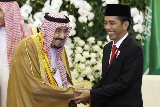 Indonesie et Arabie Saoudite signent onze accords de cooperation hinh anh 1
