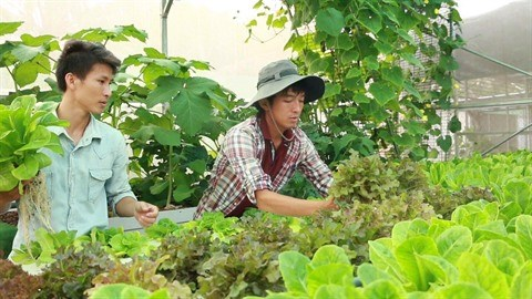 Pham Cong Chinh ou l'incarnation de l'agriculteur 2.0 hinh anh 1