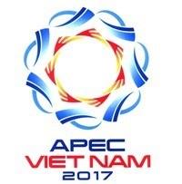 Vague d'IDE en provenance des economies de l'APEC hinh anh 1