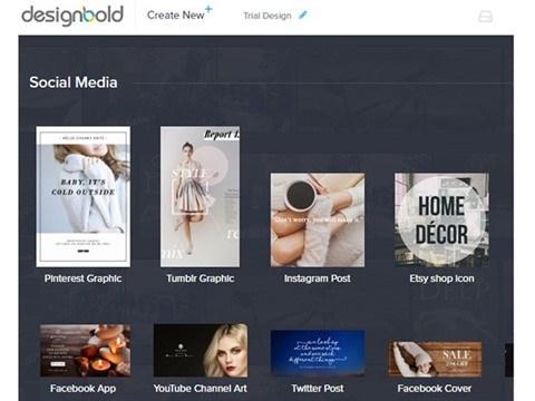 DesignBold, start-up de l'annee 2016 hinh anh 2