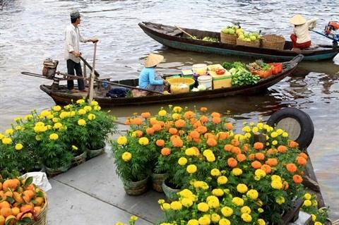 2017 : annee florissante pour le tourisme vietnamien hinh anh 2