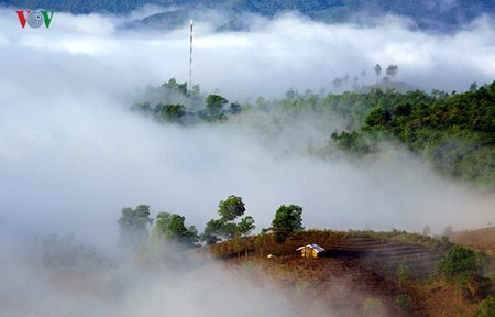 Le plateau de Sin Ho : un site paradisiaque du Nord-Ouest hinh anh 1