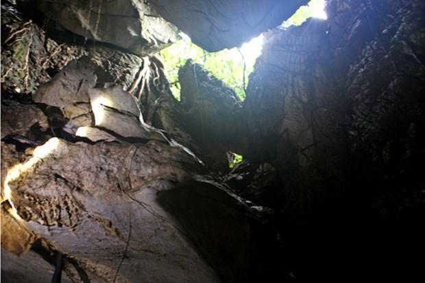 Tuyen Quang: decouverte d'un ensemble de tombeaux de l'age du fer hinh anh 1