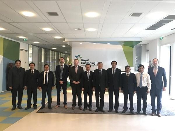 Da Nang coopere avec la Compagnie neerlandaise Royal Haskoning DHV hinh anh 1