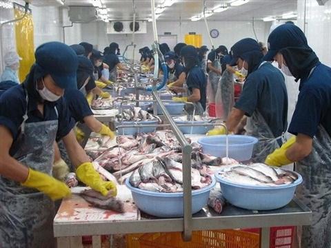 Avenir de la chaine d'approvisionnement agricole du delta du Mekong hinh anh 2